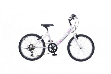 Neuzer Cindy 20 6 gyermek kerékpár több színben