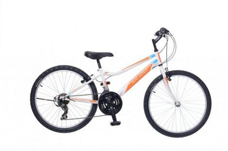 Neuzer Bobby 24 18 gyermek kerékpár több színben