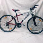 Hercules Extreme MTB gyerek kerékpár Ezüst