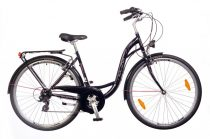 Neuzer Ravenna 30 női trekking kerékpár