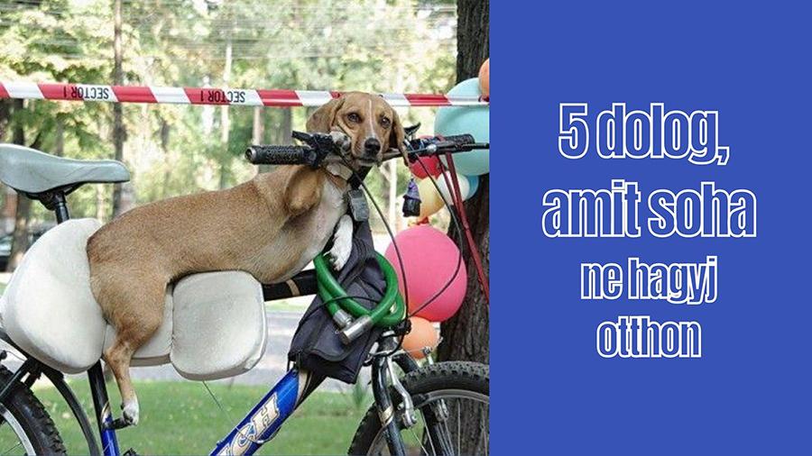 kötelező kerékpár kiegészítők