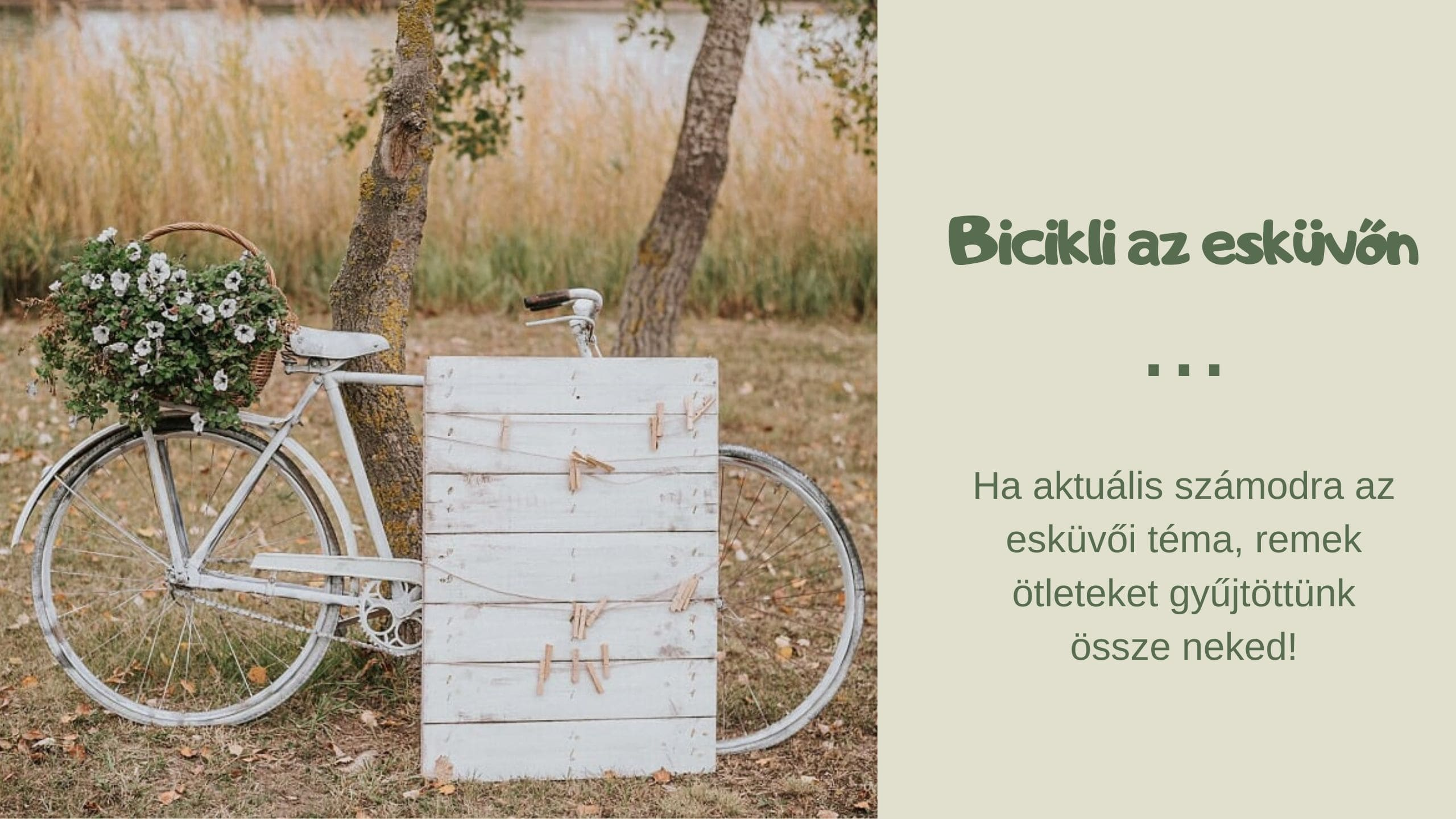 Bicikli egy esküvőn? Miért ne!